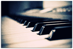 music... (Fernando Delfini) Tags: music macro texture contrast lens rebel focus keyboard dof view cross angle perspective smooth piano ivory processing fernando classical duotone kit 1855 efs ebony delfini xti 400d aplusphoto