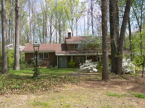 Greenwood Forest, Cary, NC 054