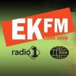 EK FM van Radio 1 en Radio Nederland Wereldomroep tijdens Euro 2008