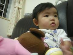 DSCN1663 (sasawong) Tags: bb cuties