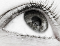 augen.jpg (untobias) Tags: white black eye auge