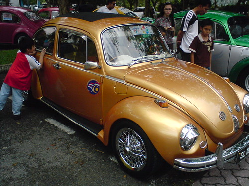 Golden Bug