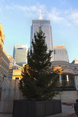 Canary Wharf at Christmas #14