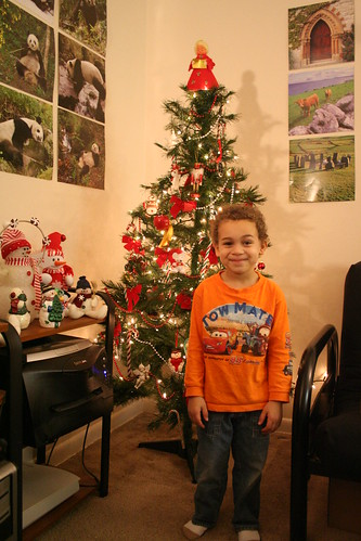 Aidan and the Tree