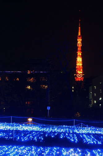 tokyotower, with love