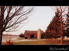 remembering (artsy_T) Tags: trees red barn michigan silo picnik owosso mybrotherandidrovearoundthecountryside whereweusedtorunandplayandrideourbikes itwasaneriefeeling wehad80acres offarmland andgrewupworkinghard nowthatland ismostlydividedup andtheoldtrees havefallendown andthatoldfarmhouse isallfixedup sonotthesameasitusedtobe