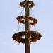 Renaissance Faire Irwindale 023