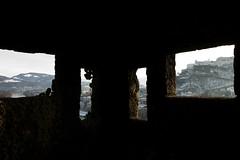 Fortress windows