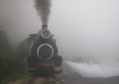 Inde - Darjeeling - Toy Train - Steam and smoke (Thierry B) Tags: world voyage travel india train geotagged photography photo reisen nikon asia asien dr smoke rail railway steam getty locomotive asie geotag coolpix5000 darjeeling brume gettyimages inde toytrain westbengal aaaaa  geolocation hindistan photographies       darjeelinghimalayanrailway cooliris brumes        thierrybeauvir  beauvir vehicules wwwbeauvircom   droitsrservs  toytrain asie dargeelinghimalayanrailway
