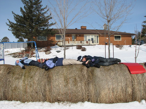 Snoozing on the hay bales