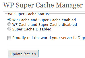 Super Cache Status