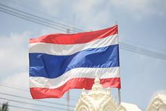 『「タイ」の意味 (夢分析)』の画像