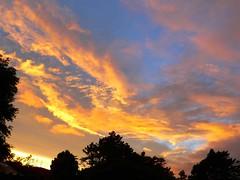 Oh Happy Day! (Sandy Austin) Tags: newzealand sunrise auckland northisland femalephotographers 50plus mywinners panasoniclumixdmcfz5 sandyaustin goldstaraward leagueofwomenphotographers absolutelystunningscapes skiescloudssunsmoons