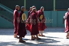30099718 (wolfgangkaehler) Tags: 2017 asia asian southeastasia myanmar burma burmese mandalay mahagandayonmonastery mahagandayonmonastary people person monks buddhist buddhistmonasteries buddhistmonastery buddhistmonk buddhistmonks