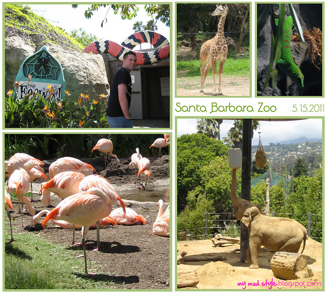 california sb zoo collage3