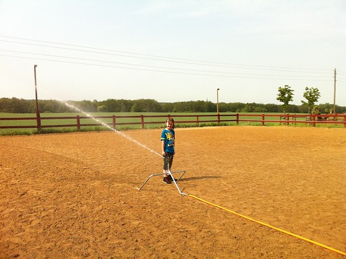 Loke hittade stallets nya vattenspridare