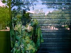 Jungle (Gabri Le Cabri) Tags: paris reflection green mannequin window metal shop closed foliage jungle shutter