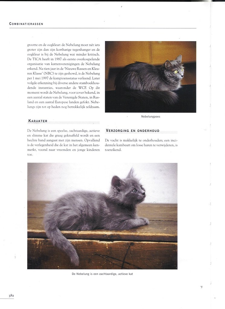 publications - Cat encyclopedia - the Netherlands -first pri 1618272950_9c9a86c4f1_b