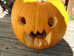 domo kun pumpkin