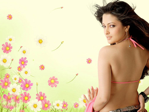 Riya Sen various hot images