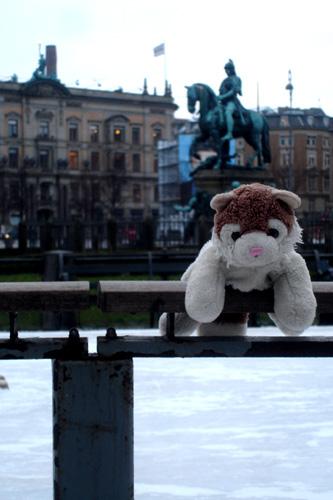 MicioGatto a Copenaghen
