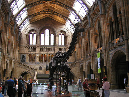 helen james님이 촬영한 London Natural History Museum (2) Published on Schmap.