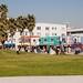 Venice Beach Feb 2008 056