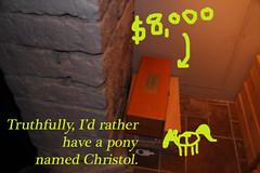 Champagne Pony