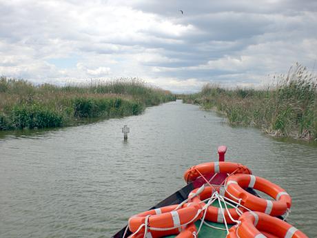 albufera-canal