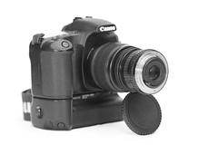 Macro Set-up 3 (jomak14) Tags: canon kitlens eos30d canonefs1855mmf3556is efs1855mmis asahipentax50mmf2 52mmto58mmstepupfilterring