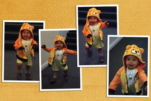 Baby Z walking