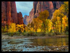 Zion National Park (Lars Kehrel) Tags: park light usa reflection green fall water yellow photography gold fantastic rocks colorful wasser flickr quality magic herbst great samsung lars gelb national 500v50f seal elite views zion colourful grn rank score favs hdr felsen classique reflektionen blueribbonwinner colorphotoaward impressedbeauty s1050 elitephotography proudshopper kehrel multimegashot reflerctions farbenfrho farbprchtig flickrclassique