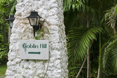 Goblin Hill