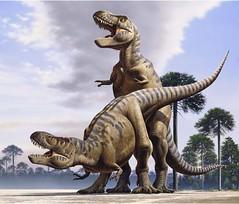 T. rex mating