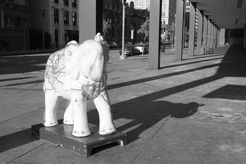 MLK library wmata metro elephant
