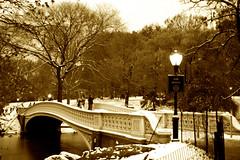 winter wonder (babadri) Tags: nyc newyorkcity trees winter light nature beauty sepia contrast landscape centralpark branches landmark breathtaking bowbridge