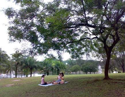 Bandar Tun Razak Park 6