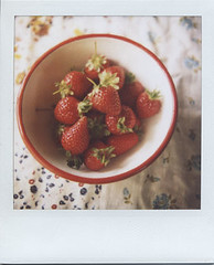craving (+akane+) Tags: fruit polaroid sx70 spring strawberry 600film