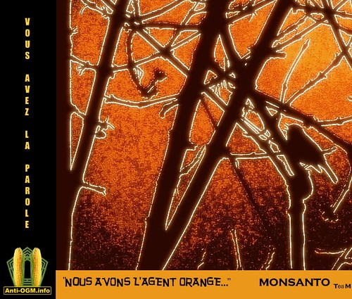 Monsanto TeaM