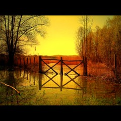 Sunset of Spring (Hankye99) Tags: sunset tree water river gate mywinners aplusphoto holidayvacanzeurlaub favemegroup9 theunforgettablepictures theperfectphotographer tup2