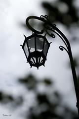 Dnde est la luz (n&s I Photography) Tags: ltytr2 ltytr1