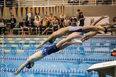 17.02.16_Swimming_Mens_Finals_LehmanCollege  (Jesi Kelley)-454 (NYCPSAL) Tags: psal public schools athletic league susan wagner stuyvesant 201617 swimming diving nyc new york city championship team lehman college nycdoe department education jessica kelley jessicakelley high school