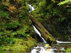 Change Creek Falls (Obi Tony Kenobi) Tags: creek waterfall snoqualmie ironhorsetrail changecreek