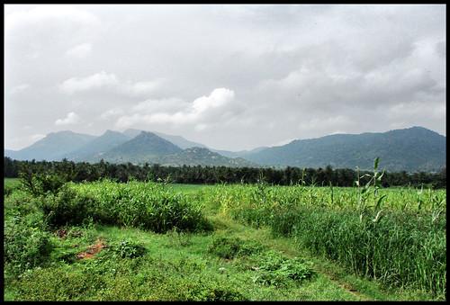 Sangam landscapes