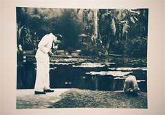 jardim botanico 1951 (zenog) Tags: jardimbotanico fl paraogato eraumavezumgatochamadozeca centromunicipaldearteheliooiticica josoiticicafilho