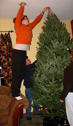 Freeing our Christmas tree