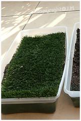 Fake Grass 2