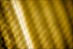 Diffusion (dnskct) Tags: abstract macro yellow pattern moire
