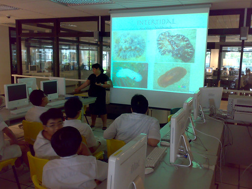 IYOR Talk, Maris Stella High School
