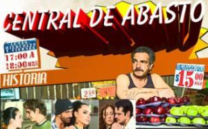 telenovela de Televisa : todotnv, toda la información sobre novelas y